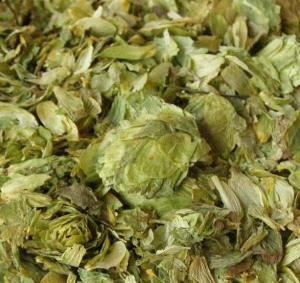 dried hops flowers